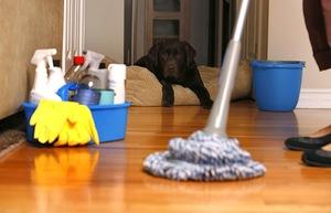 Средства для чистки дома