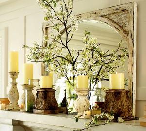 Живые растения для украшения комнаты