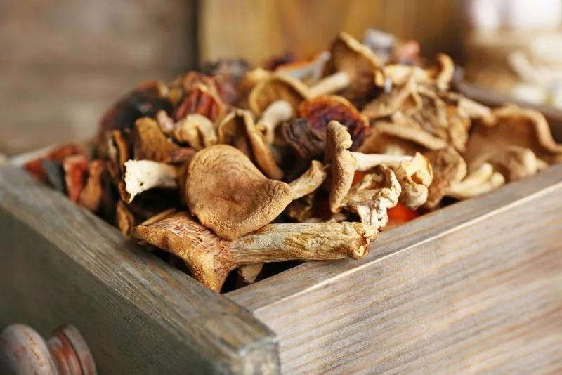 Где хранить сушеные грибы в домашних условиях 59