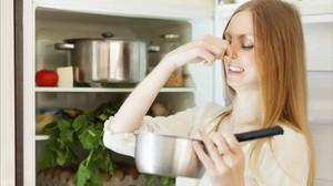 Как устранить неприятный запах из холодильника - описание