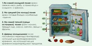 Как правильно разместить продукты в холодильнике