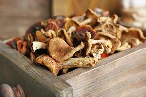 Сколько хранить сушеные грибы в домашних условиях 13